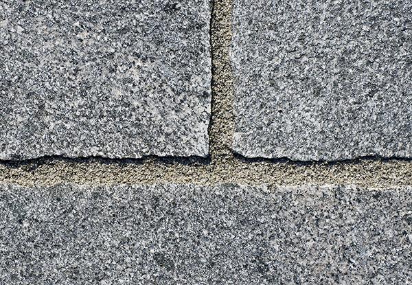 Romer hårdfog grå